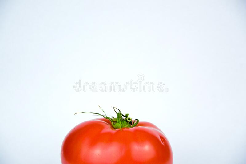 Fresh red tomato stock photos