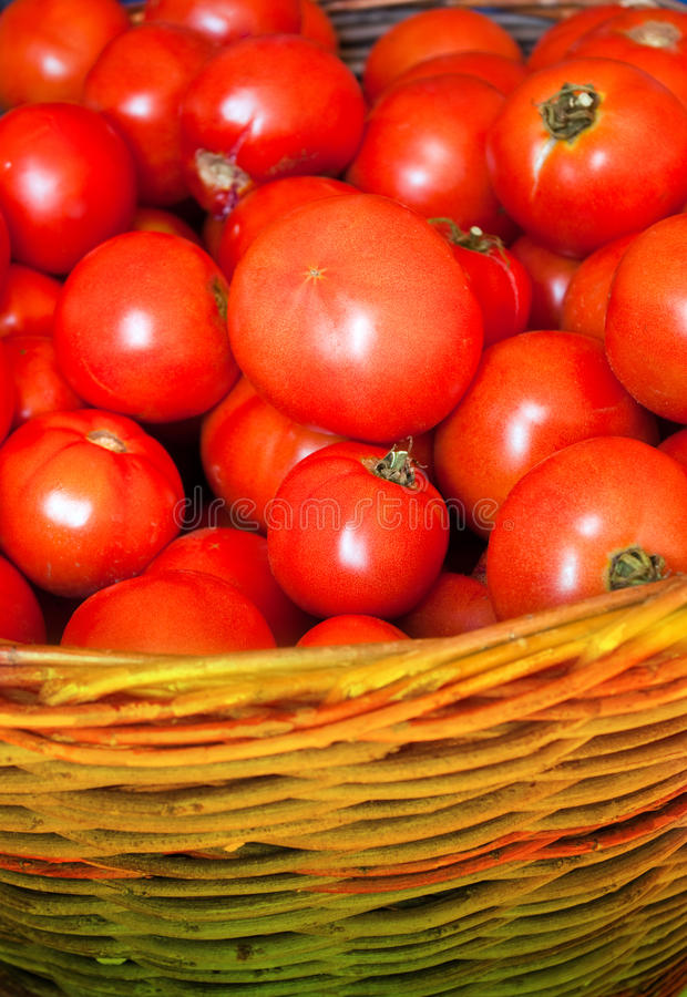 Free Fresh Red Tomatoes Stock Image - 12986271
