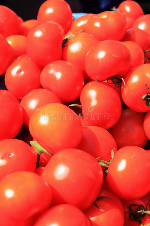 Download Fresh red tomatoes stock photo. Image of juicy, object - 22930116