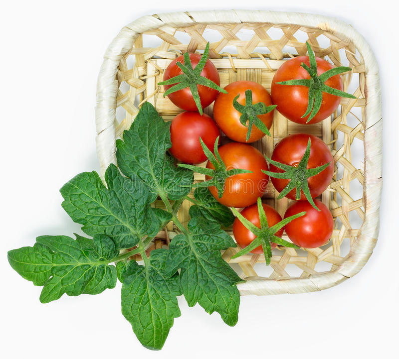 Fresh red tomatoes in basket on white background royalty free stock photography