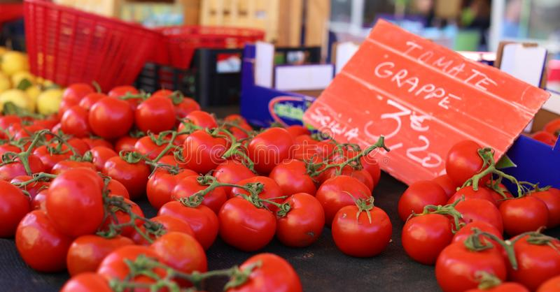 Fresh red tomatoes at a farmer market in France, Europe. Italian tomatoes. Street French market at Nice. stock photo