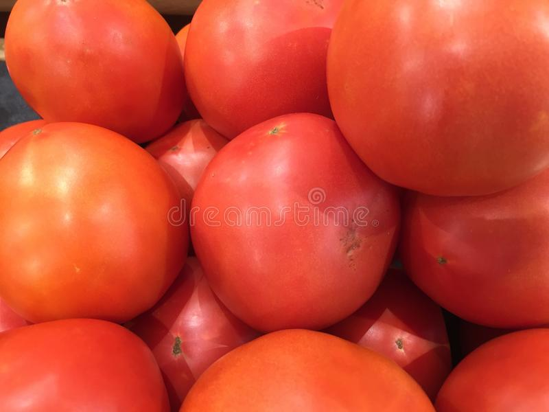 Fresh red tomatoes. A juicy treat. stock images