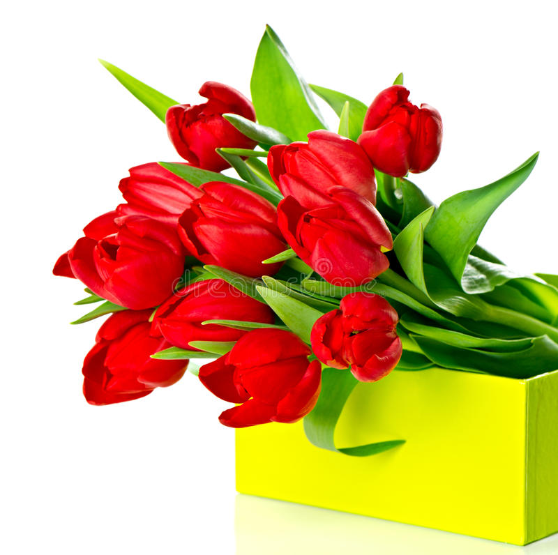 Free Fresh Red Tulips In The Green Gift Box Royalty Free Stock Images - 23607019