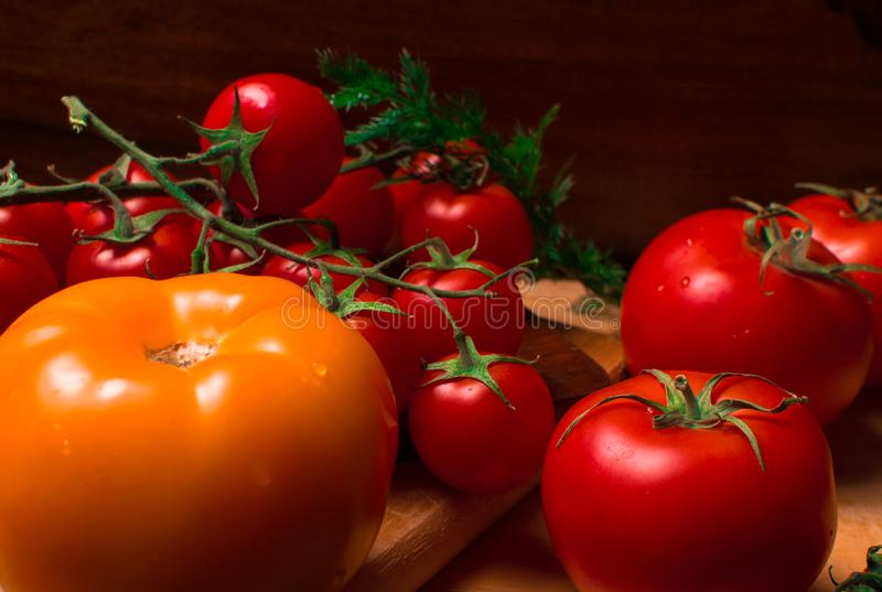 Fresh red and yellow tomatoes. With dill on wood background royalty free stock photo