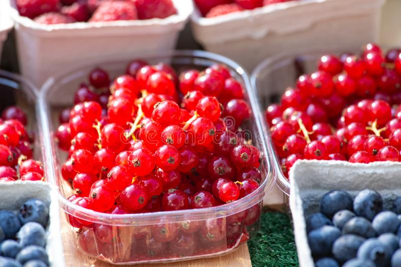 Fresh Redcurrant and Blueberry on sale on a market.  Healthy delicious colorful Fruit for Juices and Desserts stock photo
