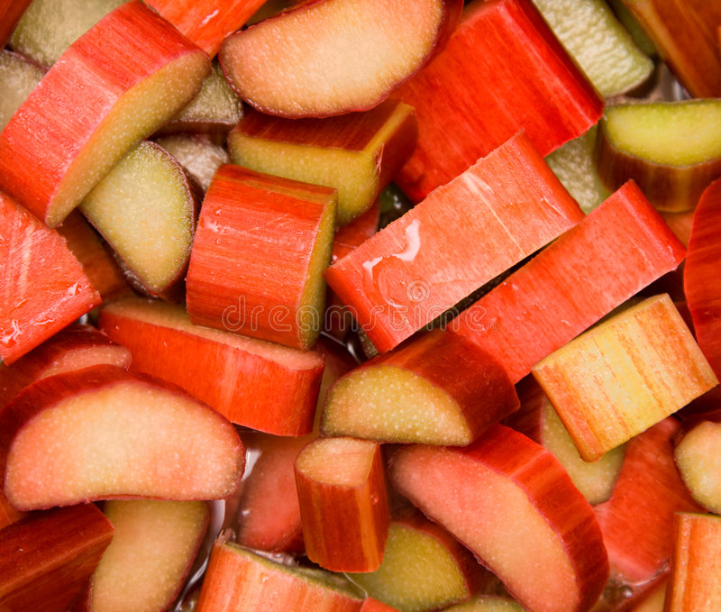 Download Fresh rhubarb stock photo. Image of nature, tasty, water - 9141104