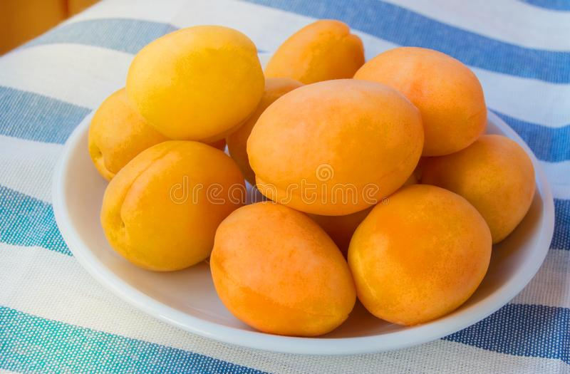Fresh ripe apricots on a white plate on a striped tablecloth, on a Sunny summer day on the terrace. Closeup, yellow, food, fruit, healthy, natural, organic royalty free stock photography