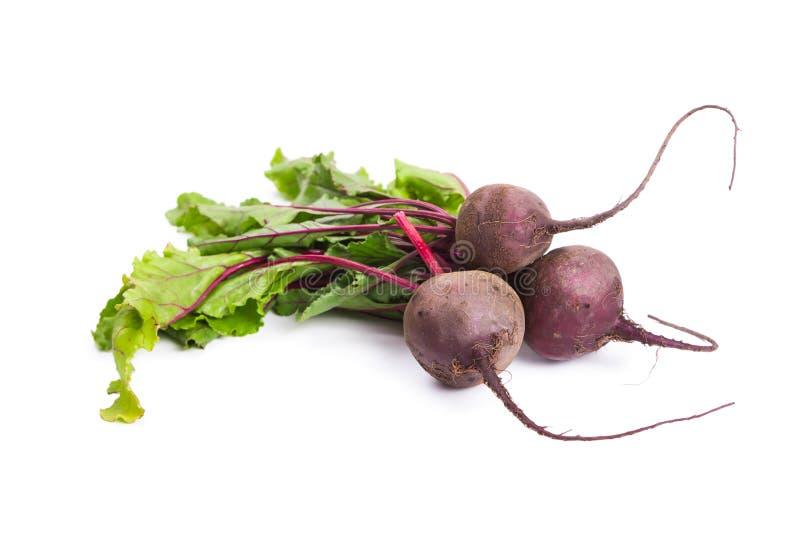 Fresh ripe beet. Isolated on white background stock photos