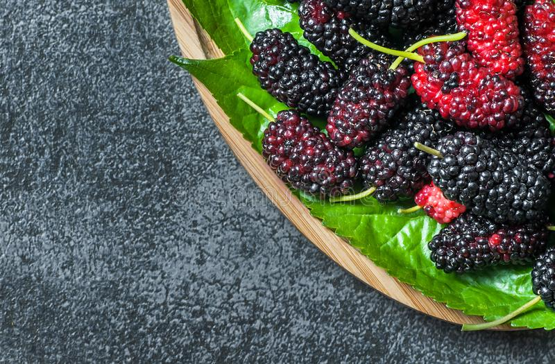 Fresh ripe black mulberry berry fruit with leaf on grey rustic table. Blackberry summer red fruits concept royalty free stock images