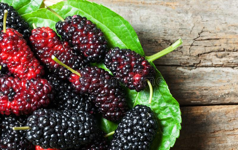 Fresh ripe black mulberry berry fruit with leaf on rustic wooden background. Blackberry summer red fruits concept royalty free stock photo