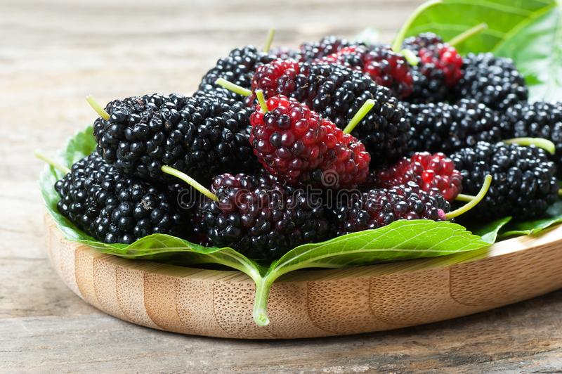 Fresh ripe black mulberry berry fruit with leaf on rustic wooden background. Blackberry summer red fruits concept royalty free stock photography