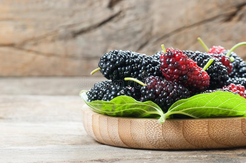 Fresh ripe black mulberry berry fruit with leaf on rustic wooden background. Blackberry summer red fruits concept royalty free stock images