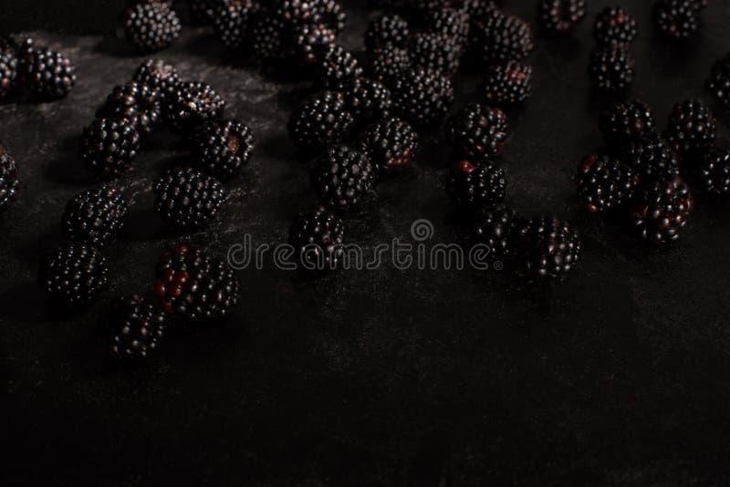 Fresh ripe blackberries royalty free stock photography
