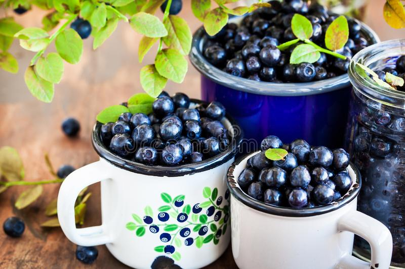 Fresh ripe bluberries bilberries in enamel mugs. Close up stock images