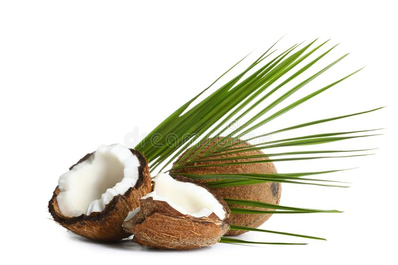 Fresh ripe brown coconuts with leaves on white royalty free stock photos