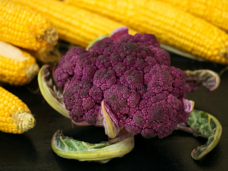Fresh, ripe ears of corn and forks of purple cauliflower. Located on a black wooden surface. close-up royalty free stock image
