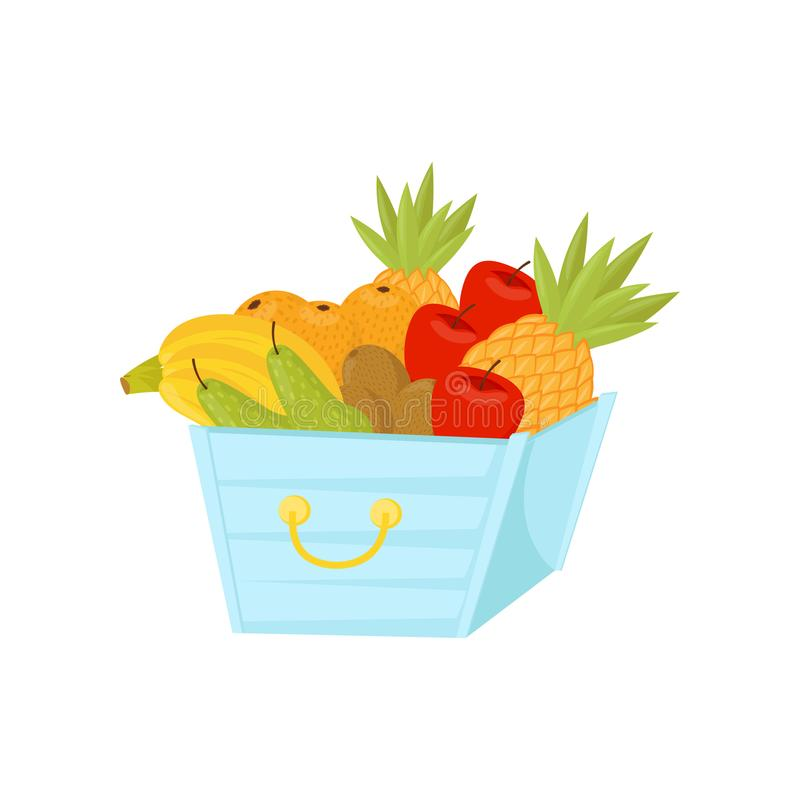 Fresh ripe fruits in plastic basket, healthy lifestyle and diet concept vector Illustration on a white background stock illustration