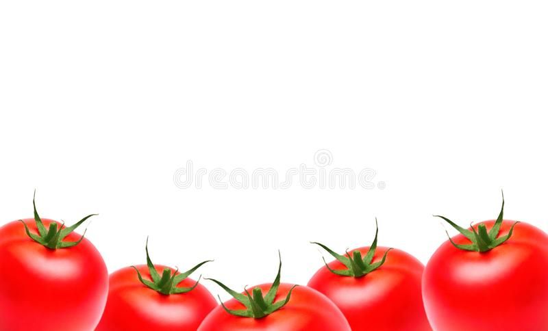 Fresh ripe garden tomatoes and basil on wooden table. Top view stock photo