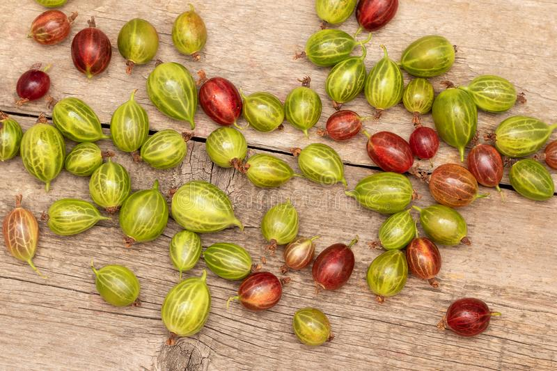 Fresh ripe gooseberry on a wooden background.  royalty free stock photography