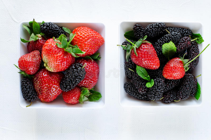 Fresh ripe mulberries and strawberries with mint in bowl on white background, copy space stock image