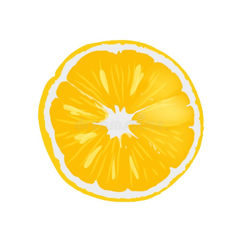 Fresh Ripe Orange Juicy Round Slice Illustration. Fresh ripe orange juicy round slice. Delicious tropical citrus fruit. Natural fruitage full of healthy vitamins vector illustration