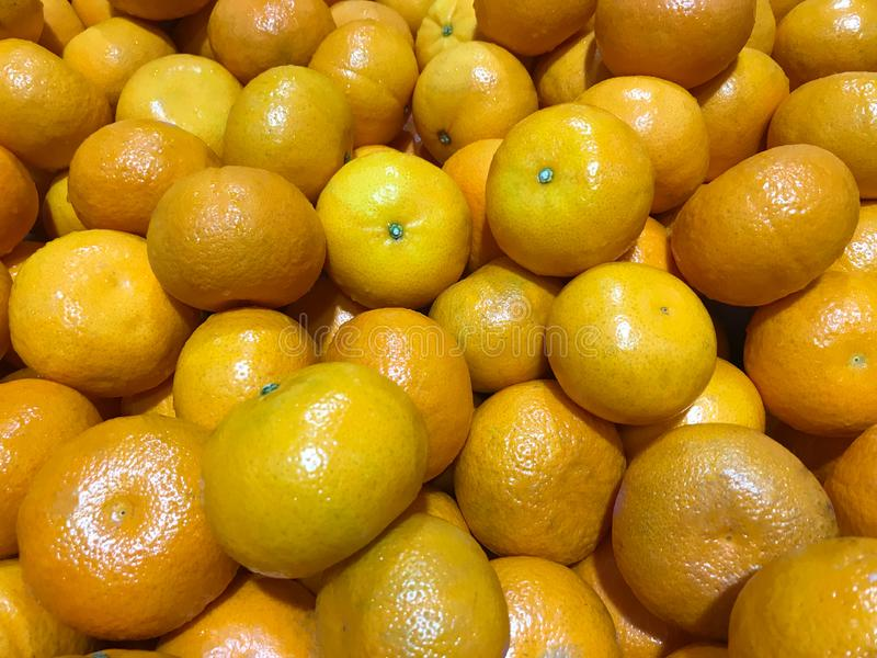 Fresh and Ripe oranges. royalty free stock images