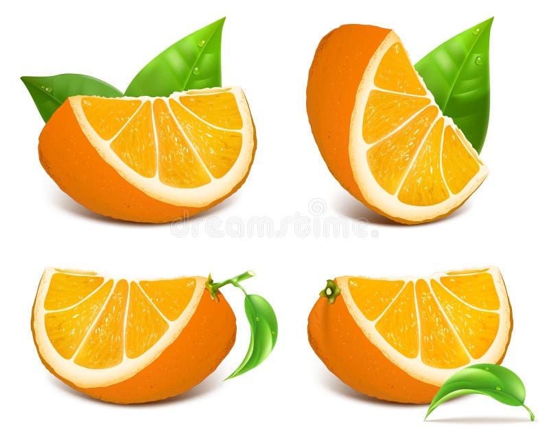 Fresh ripe oranges. With green leaves. Vector illustration stock illustration