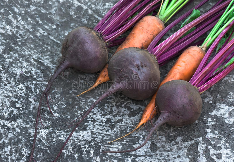 Fresh ripe organic roots beet and carrots. Fresh, ripe, organic roots beet and carrots assembled into garden. agriculture background royalty free stock photography