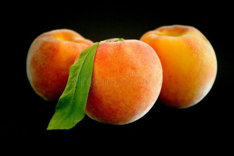 Download Fresh ripe peaches stock photo. Image of centered, abstract - 3264472