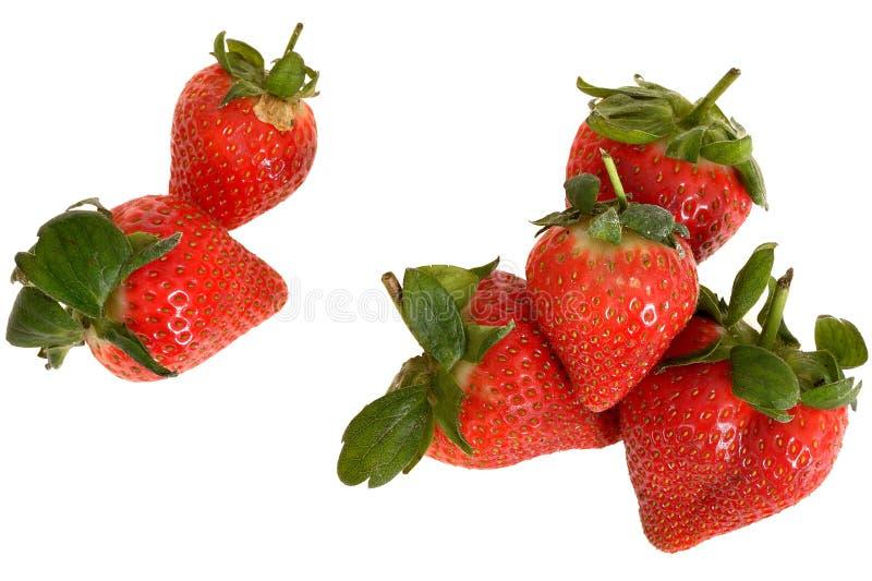 Fresh Ripe Plump Juicy Sweet Strawberries stock images