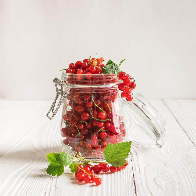 Fresh ripe red currant berry in a glass jar on a white background. Square frame stock image