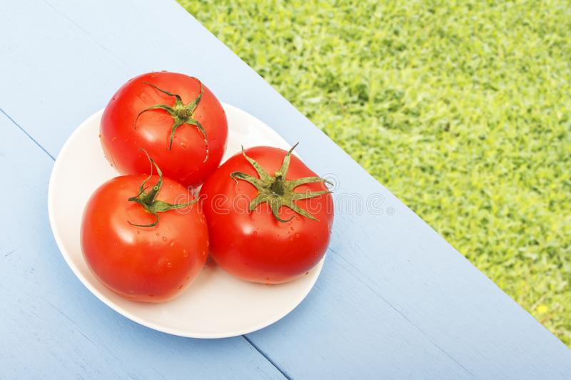 Fresh ripe tomatoes on wooden table. Green blurred grasses for copy space. Organic vegetables for healthy breakfast or dinner.  royalty free stock photography