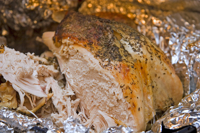 Download Fresh Roast Turkey stock image. Image of cooking, meat - 4115101