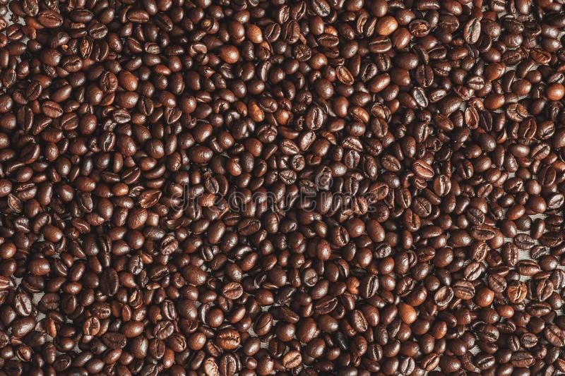 Fresh roasted brown coffee beans, top view of seeds texture as food background for design, macro photo stock photo
