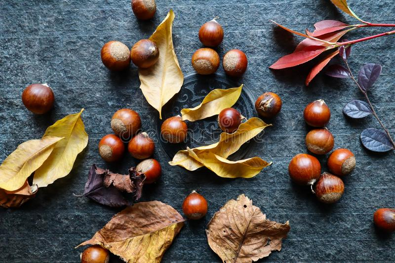 Fresh roasted chestnut on the table royalty free stock image