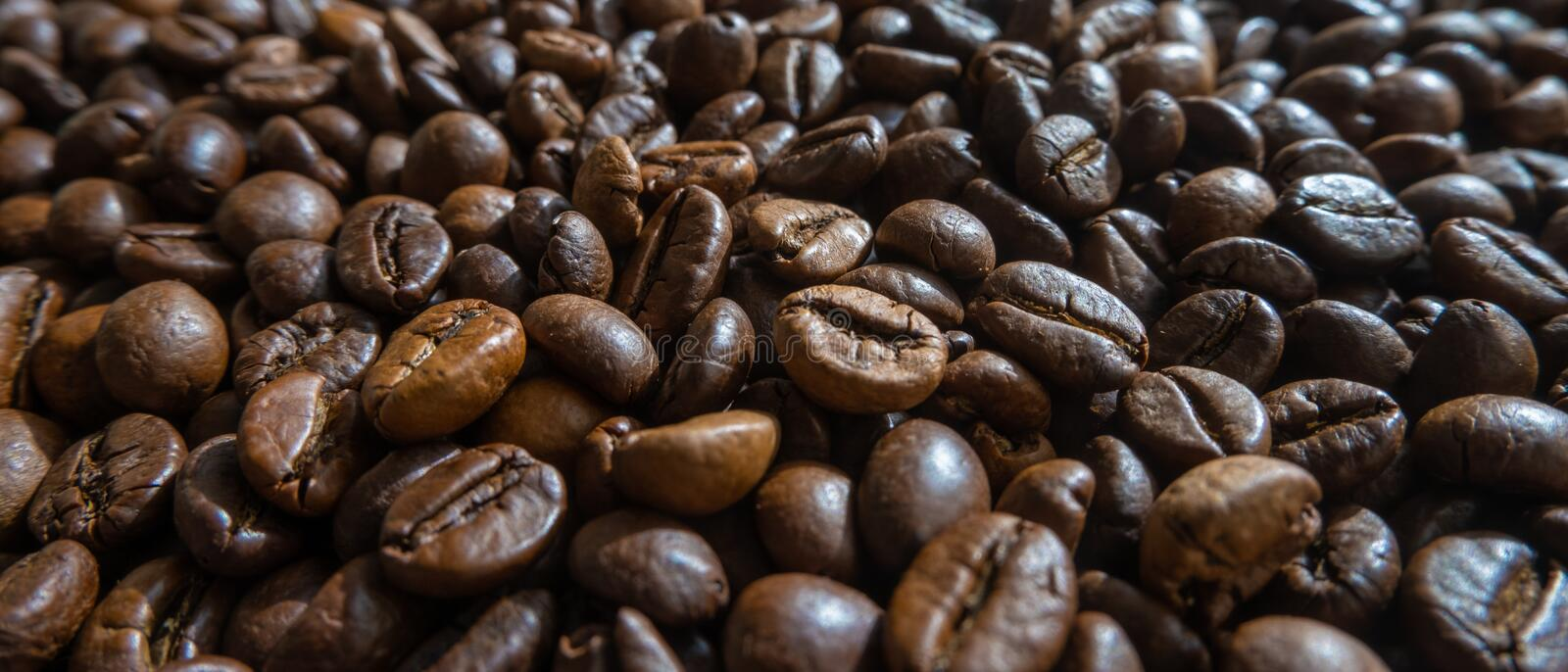 Fresh roasted coffee beans close up. Wide background. Fresh roasted coffee beans close up. Low angle shot, wide background royalty free stock image