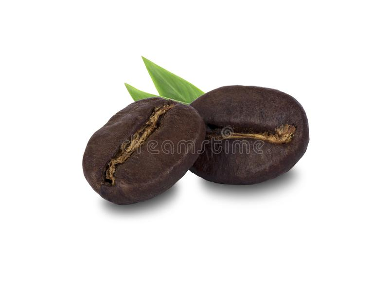 fresh roasted coffee beans stock images