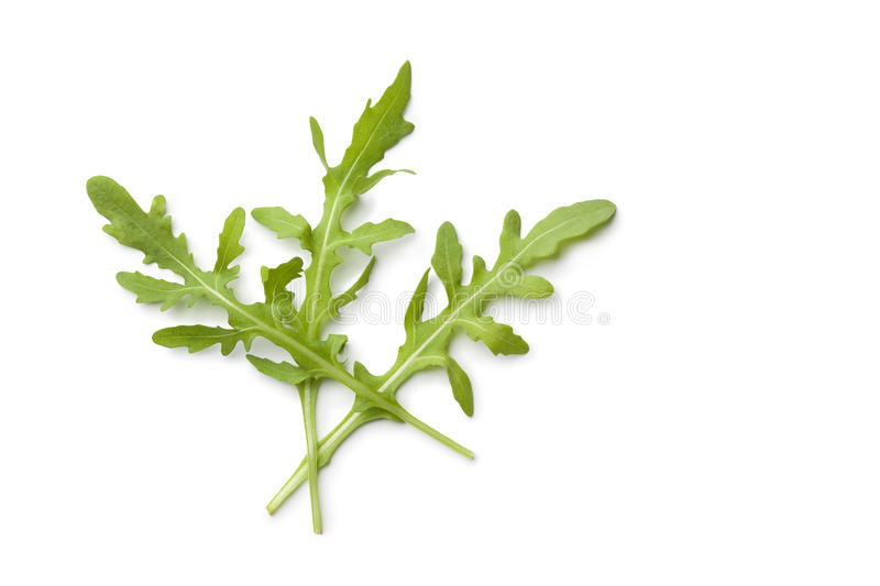 Fresh rocket salad leaves. On white background stock image