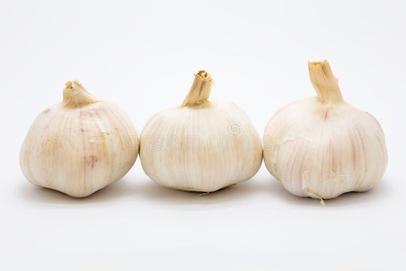 Fresh rood garlic on white background. Isolated royalty free stock photography