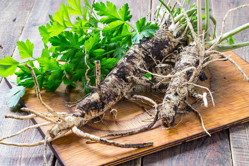 Fresh roots and parsley on a board stock photo