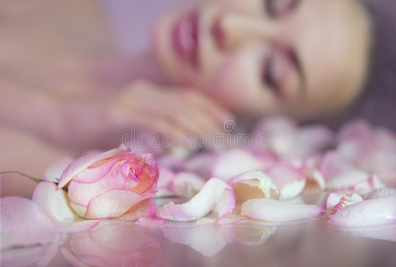 Fresh Rose petals and pink rosebud. Blurred Woman face with clean Healthy skin on background. Fresh Rose petals, Pink rosebud. Blurred Woman face with clean royalty free stock photos