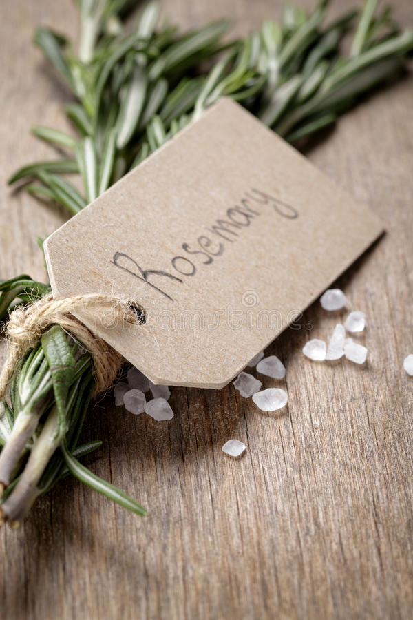 Fresh rosemary bunch stock photography