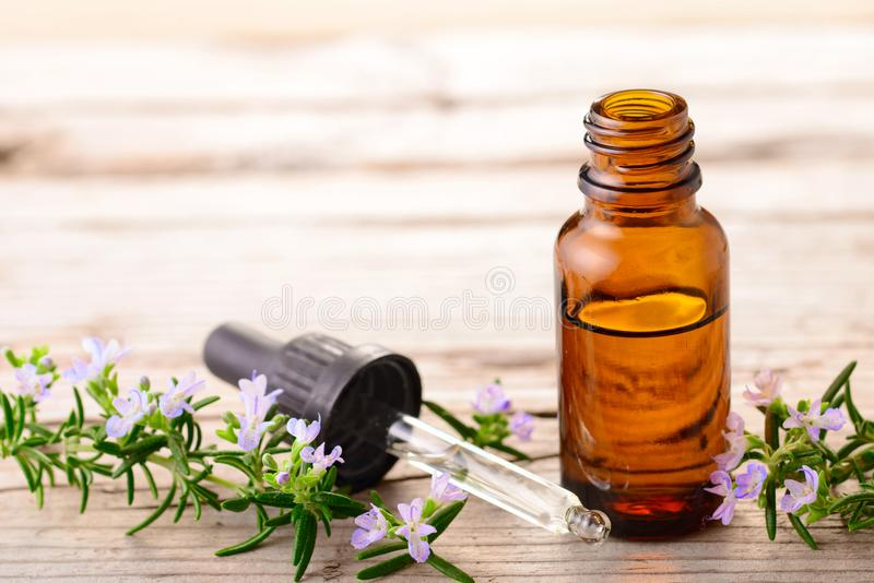 Fresh rosemary flowers and essential oils on the table. Rosemary essential oil and flowers on the wooden board stock photo