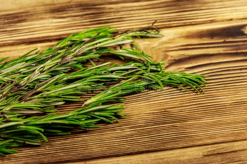 Fresh rosemary herbs on wooden table royalty free stock photo