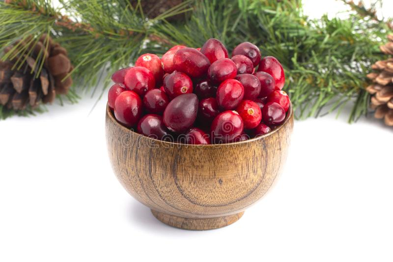 Fresh Red Cranberries on a White Background stock image