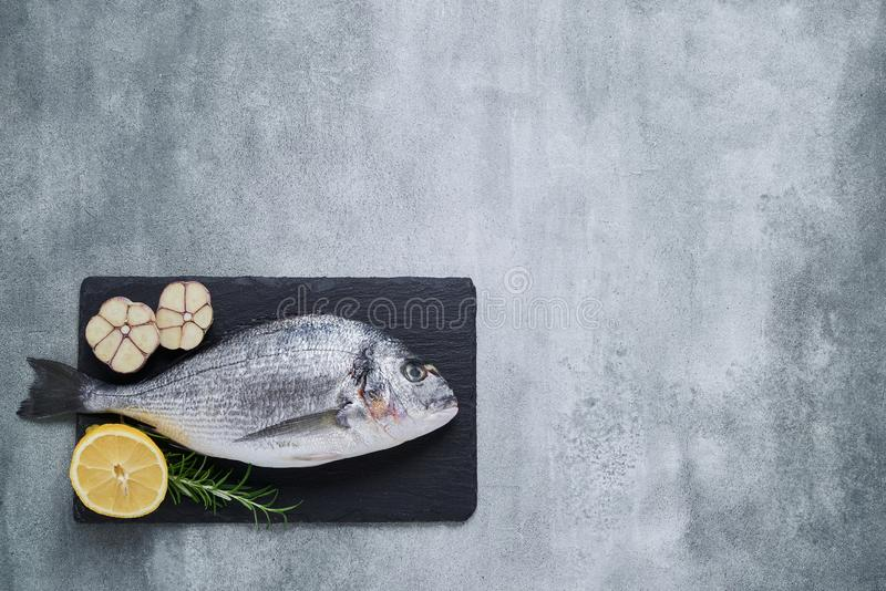 Fresh Royal Dorade on gray background. Healthy food concept. Top view, copy space. Mediterranean seafood concept royalty free stock photography