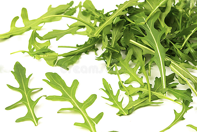 Fresh Rucola lettuce stock images