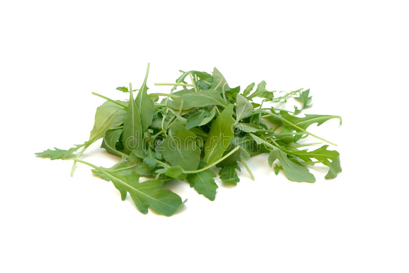 Fresh Rucola Salad. A pile of fresh rucola salad isolated on a white background stock images