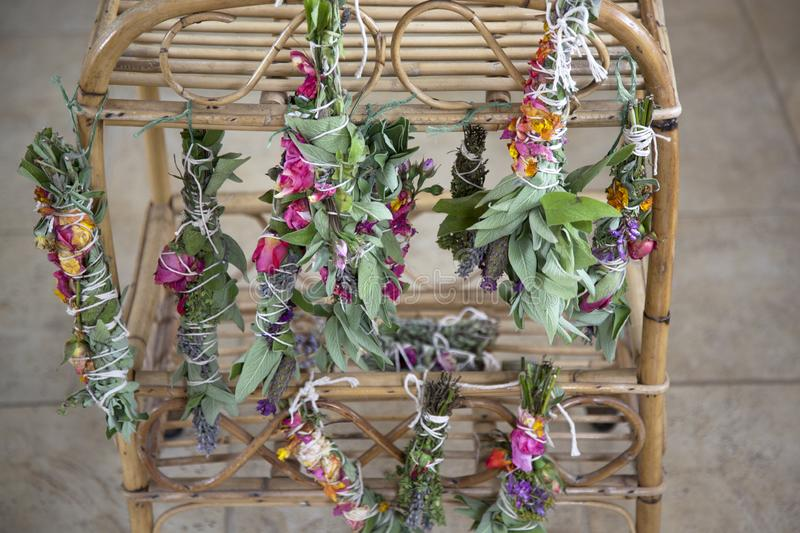 Fresh Sage Smudge Sticks Bound and Hung out for Drying royalty-vrije stock foto