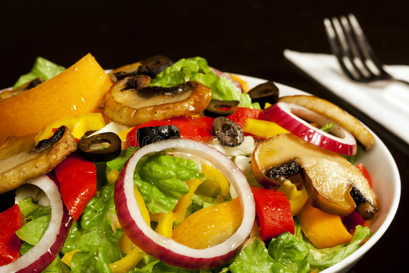 Download Fresh salad stock image. Image of fork, delicious, dish - 17369695